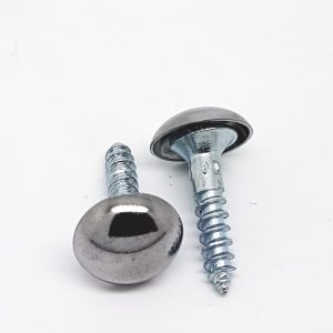 Mirror Screw Chrome Dome