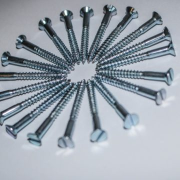 Slotted Screws